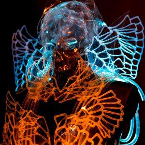 Esqueleto de cristal